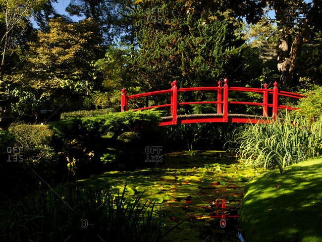 A red foot bridge within a Japanese themed garden in Ireland