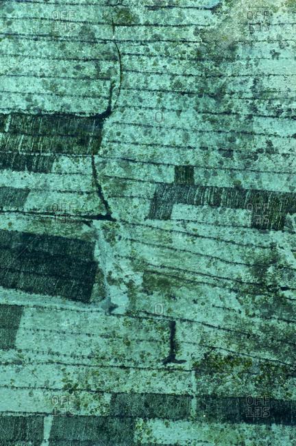 Close up aerial photo of a seaweed farm plantation