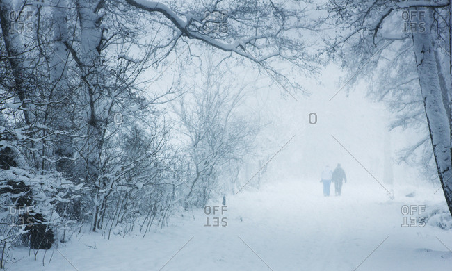 People Walking Through A Snow Covered Forest