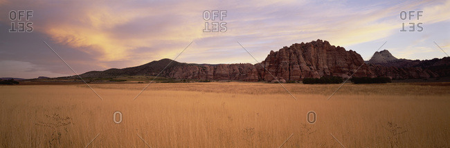 Landscape Of Buffalo Grass And Mesas At Zion National Park