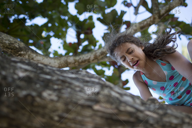 a young girl climbs on the branch of a tree on the beach