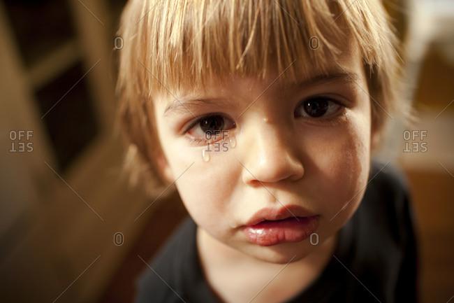 Portrait of little boy crying