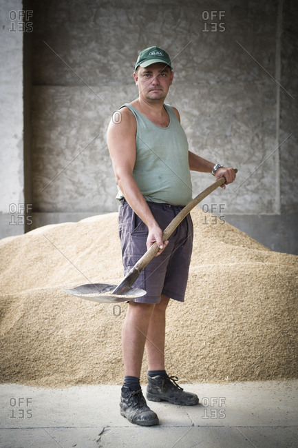 Man shoveling grain