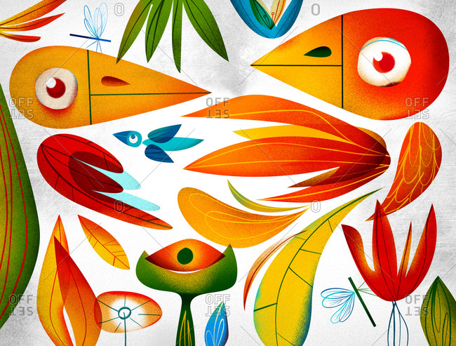 Colorful abstract birds and feathers