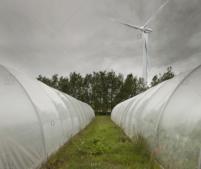 Computer Composite of Wind Turbine and Greenhouses, Iceland