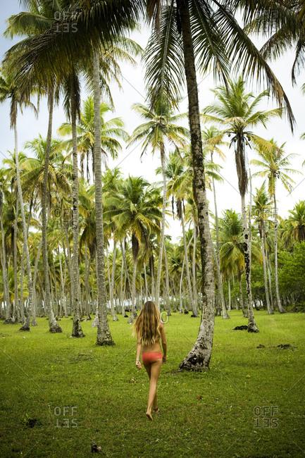 Rear view of a pretty girl walking in Ilha Boipeba, Brazil