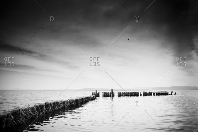 Seascape with old wooden piles