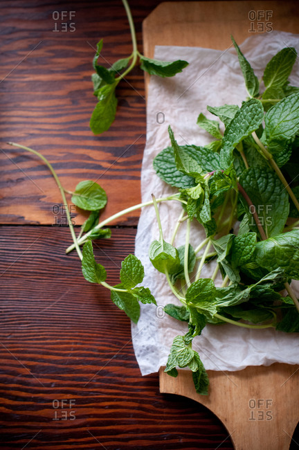 Fresh mint drying on piece of paper towel