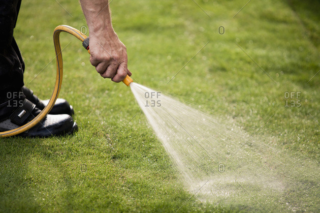 Cropped image of man watering grass turf in lawn