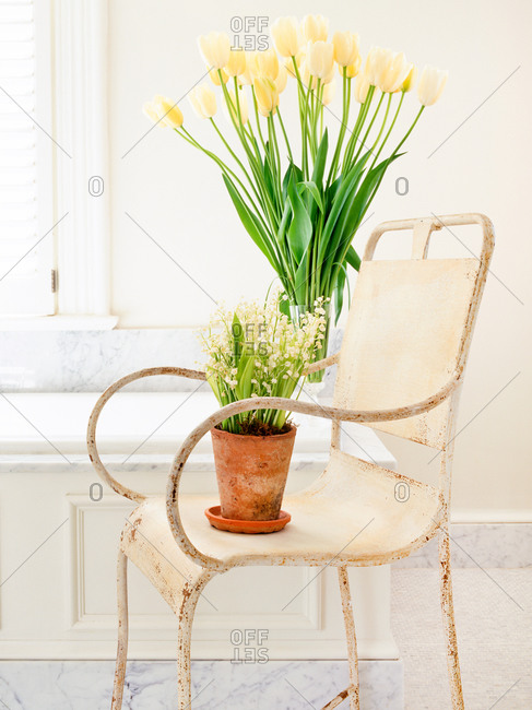 Bathroom chair with spring flowers