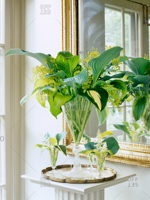 Vases with bouquet made from Hosta leaves