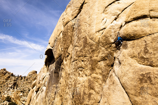 A male climber in a blue jacket climbs Illusion Dweller (5.10b) in The Real Hidden Valley of Joshua Tree National Park, California.