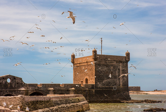 Fortification with bastion and flying seagulls