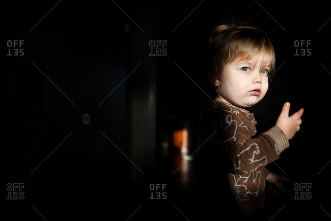 portrait of a toddle