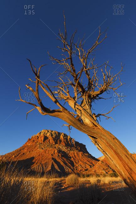 A brilliant blue sky over Ghost Ranch near Abiquiu, New Mexico