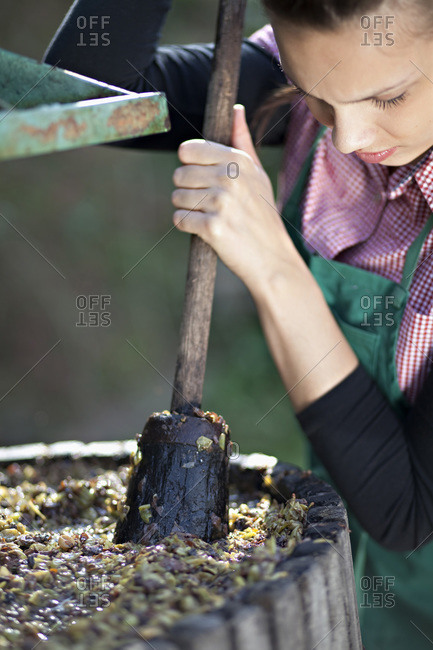 Croatia, Baranja, Young woman crushing grapes, close up