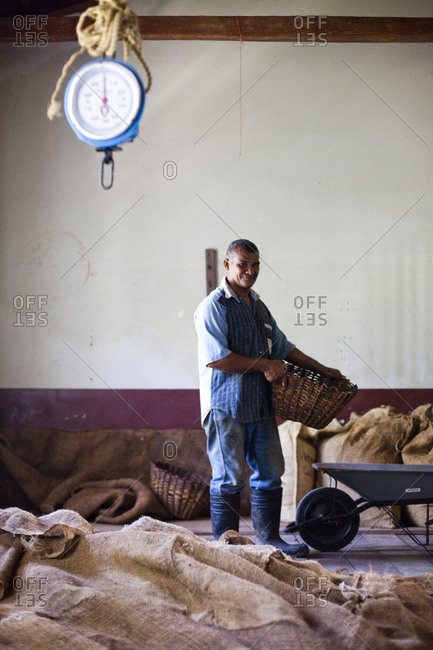 A portrait of a cacao worker in a warehouse holding a basket in the small, remote village of chuao, venezuela