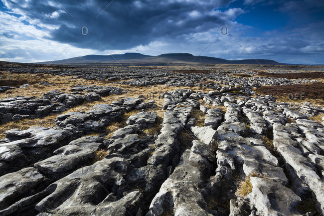Moughton Scars, Yorkshire Dales, Yorkshire, Yorkshire and the Humber, England