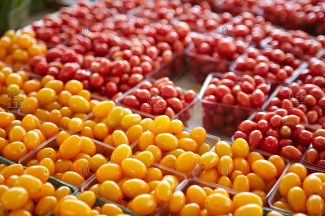 Yellow and red cherry tomatoes displayed on farmer's market