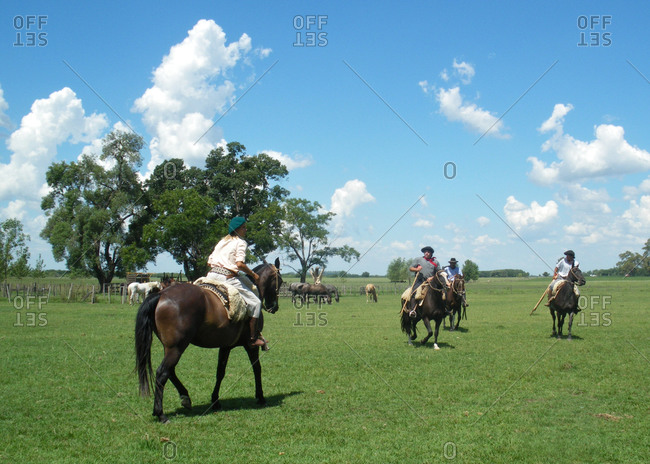 gaucho on horses