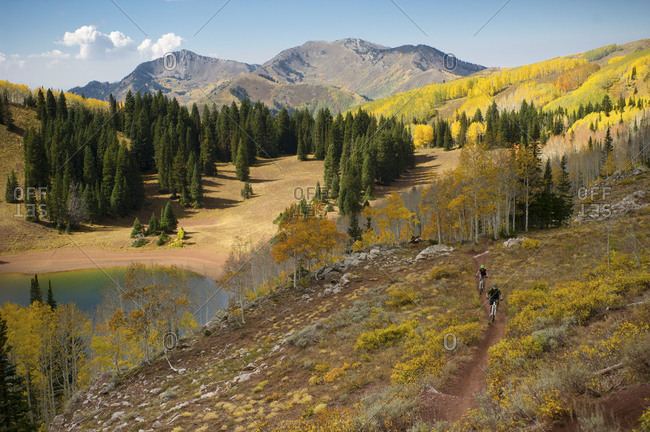 Two people mountain biking through the Wasatch Crest Trail in Big Cottonwood Canyon, Utah