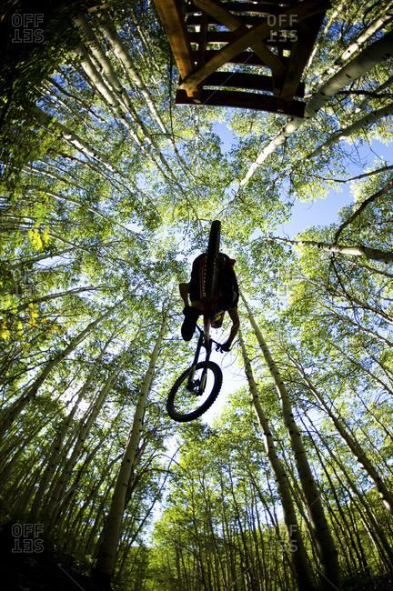 a mountain biker, mid jump