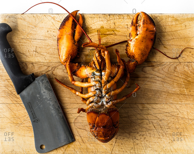 Composition with fresh lobster displayed on cutting board