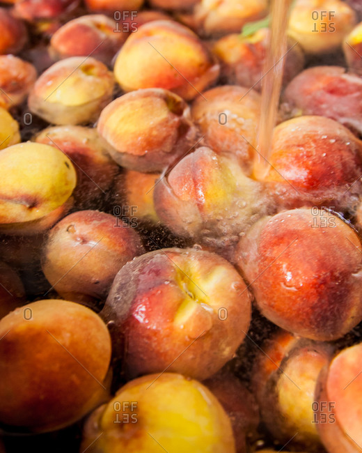 Producing peach brandy: washing fruits