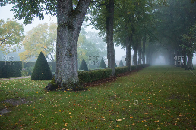 Chateau garden in foggy weather