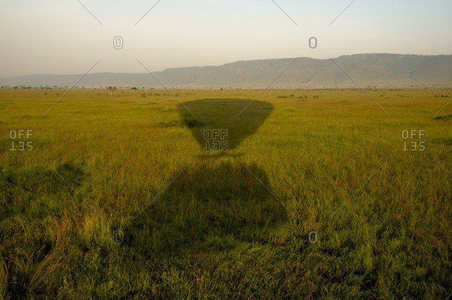 Grassland with shadow of a hot air balloon in Maasai Mara National Reserve, Kenya