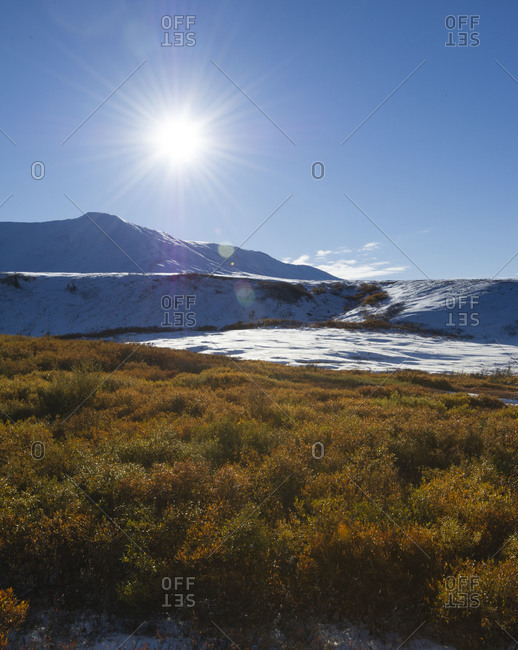 Sunny landscape of Tombstone Territorial Park in Yukon Territory, Canada
