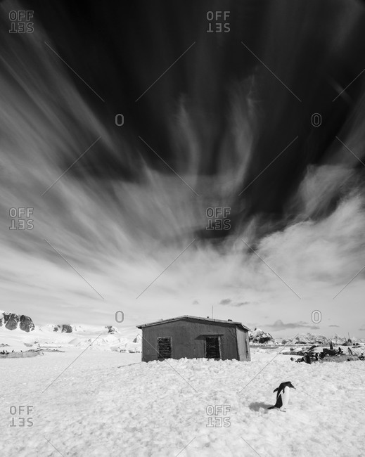 Snowy landscape with abandoned old house in Antarctica
