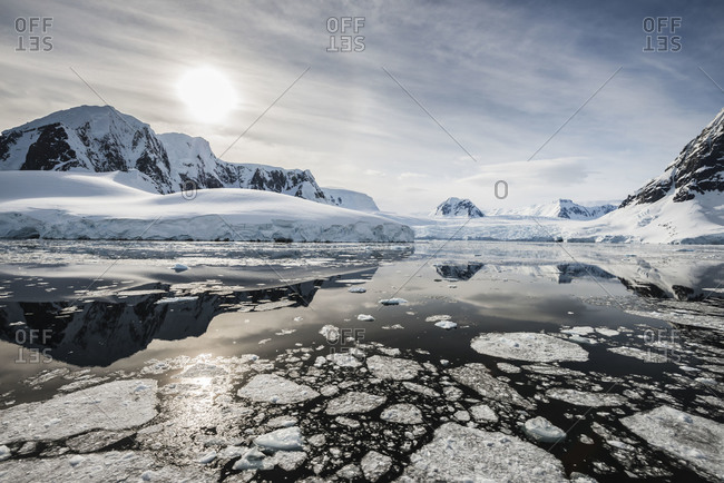 Tranquil scene of floating iceberg in Antarctica