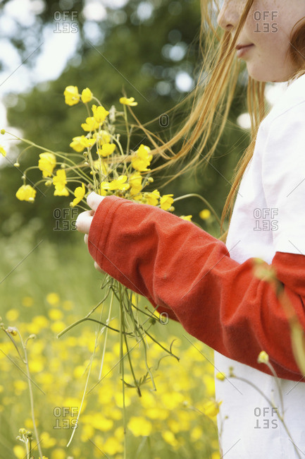 Girl picking wildflowers