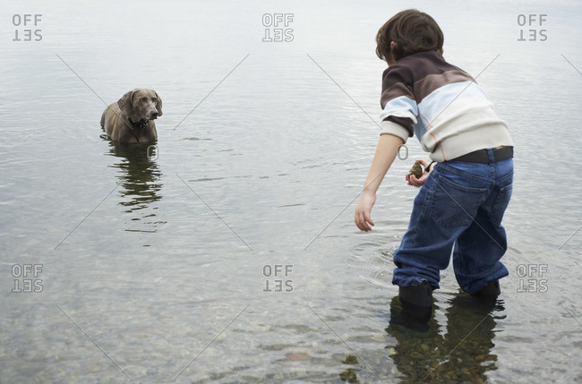 Boy playing with dog on beach