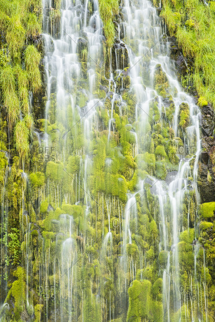 Mossbre Falls is a cascading spring that flows year round into the Sacramento River in Northern California