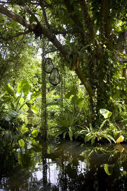 Flora in Rayavadee, Krabi situated on southern Thailand�s Andaman coast