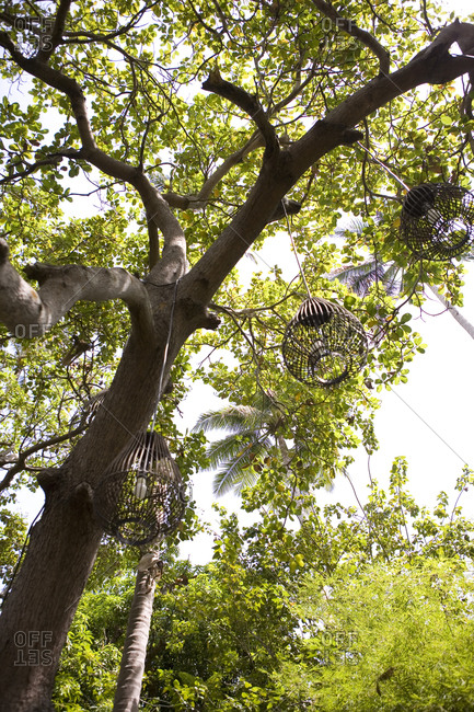 Low-angle view of hanging lanterns on southern Thailand�s Andaman coast