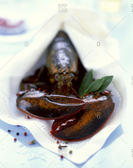Shallow focus shot of whole lobster wrapped in a linen napkin