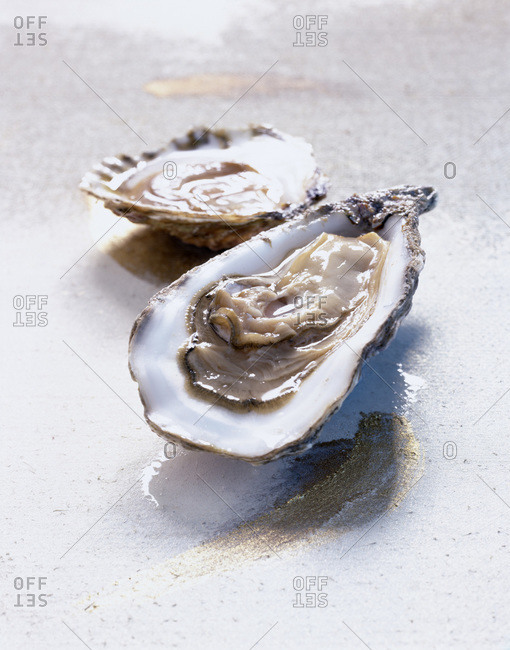 Opened oysters on table top