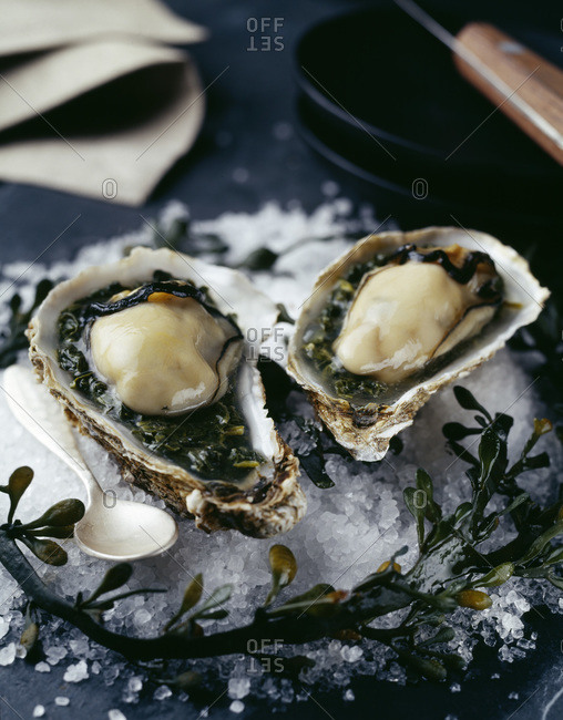 Oyster in cress jelly on rock sea salt