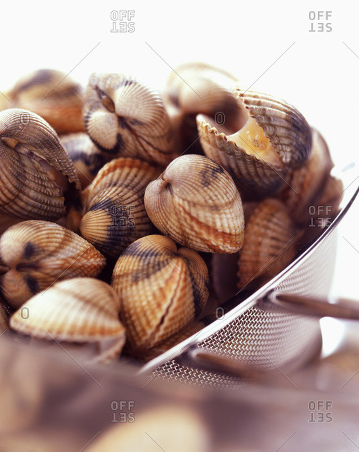 Close up of cockles in a colander