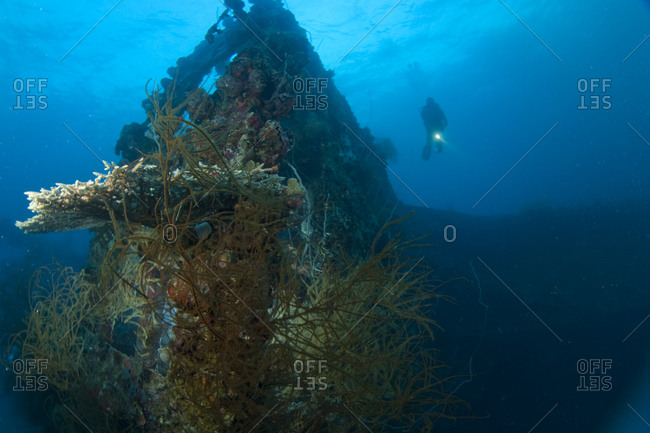 Japanese Teshio Maru Standard 1 V Freighter Wreck from WWII,  Palau,  Micronesia,  Western Pacific