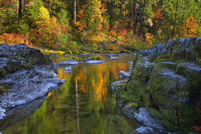 North Umpqua in Umpqua National Forest,  Oregon,  USA