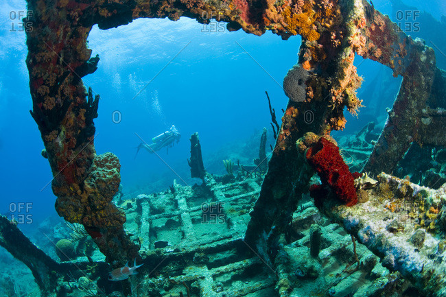 scuba diver, Wreck of the  Rhone, sank after the Great Hurricane of 1867 off the coast of Salt Island, near Tortola, British Virgin Islands, Caribbean.