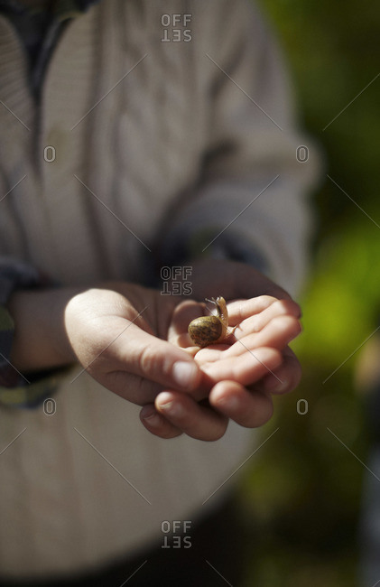 A boy holds a snail at an organic farm in Bolinas, California