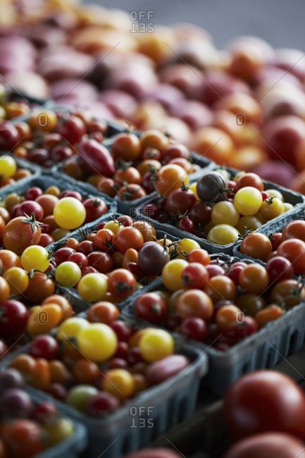 Heirloom cherry tomatoes at a farmer's market in San Rafael, California