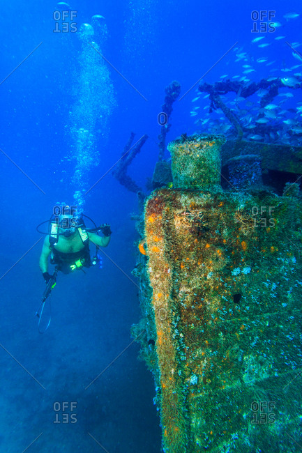 Scuba diver swimming by shipwreck