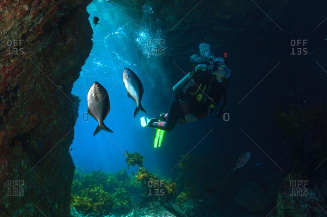 Scuba diver entering underwater cave