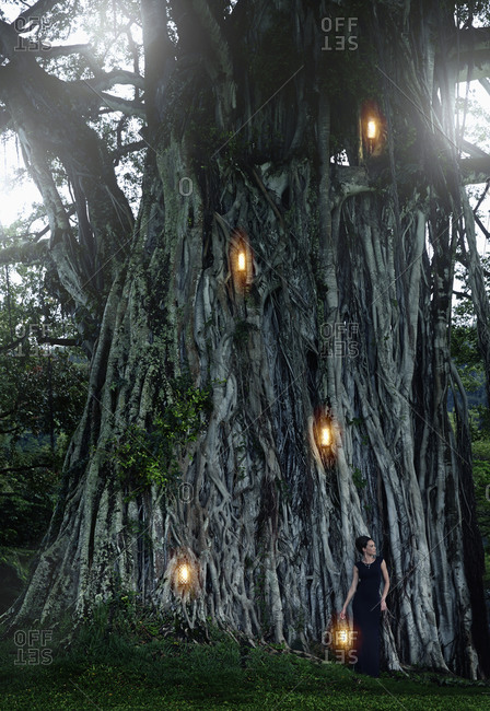 Pacific Islander woman by illuminated banyan tree
